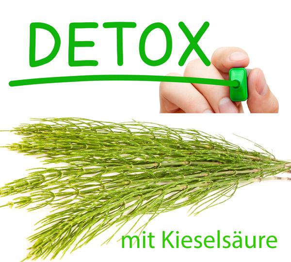 Detox mit Schachtelhalm, Kieselsäure, Silizium