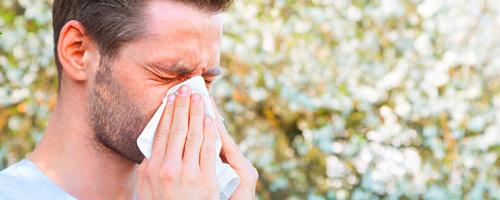 Allergie_Heuschnupfen_dollar_500x300.jpg