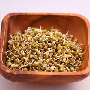 mungobohnen-sprossen_b-vitamine_659x659.jpg