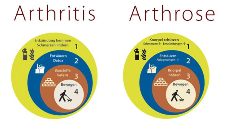 Ernährungsumstellung Bei Arthrose